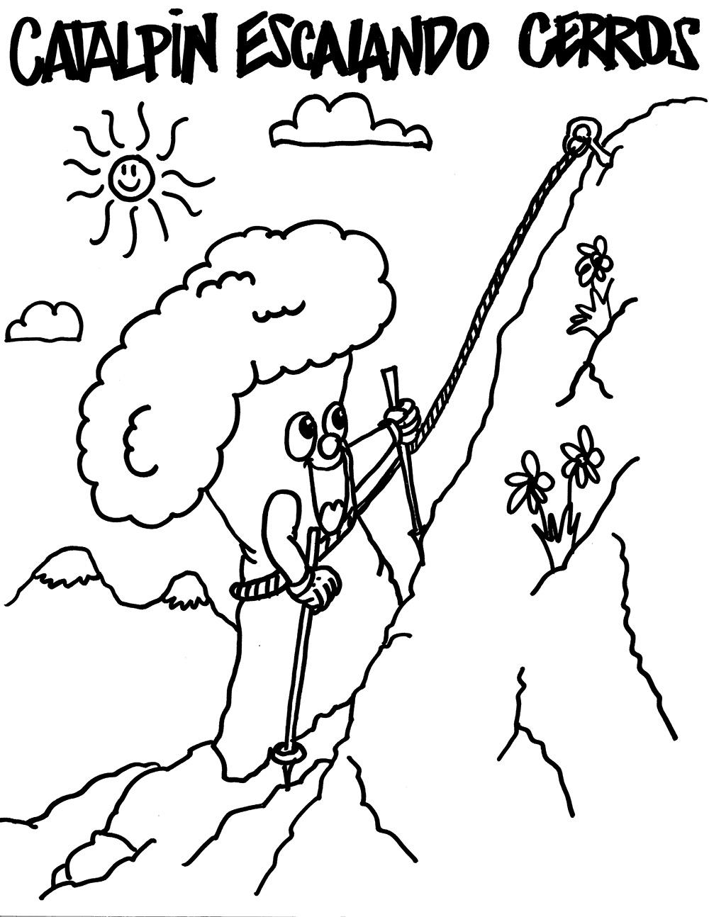 Catalpin Escalando Cerros